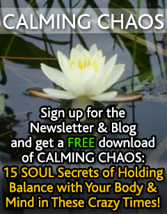 Sign up for our Newsletter and receive a free gift!